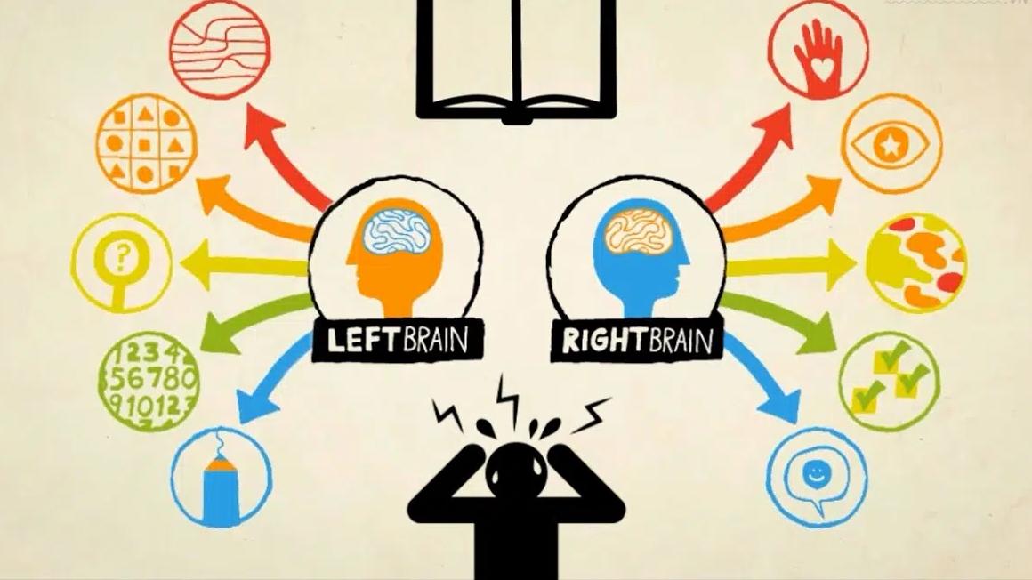 Giáo sư tâm lý học tại Đại học Harvard chỉ ra 3 cơ hội để trẻ trở nên thông minh hơn trong đời, để đến trung học cơ sở thì đã muộn - Ảnh 2.