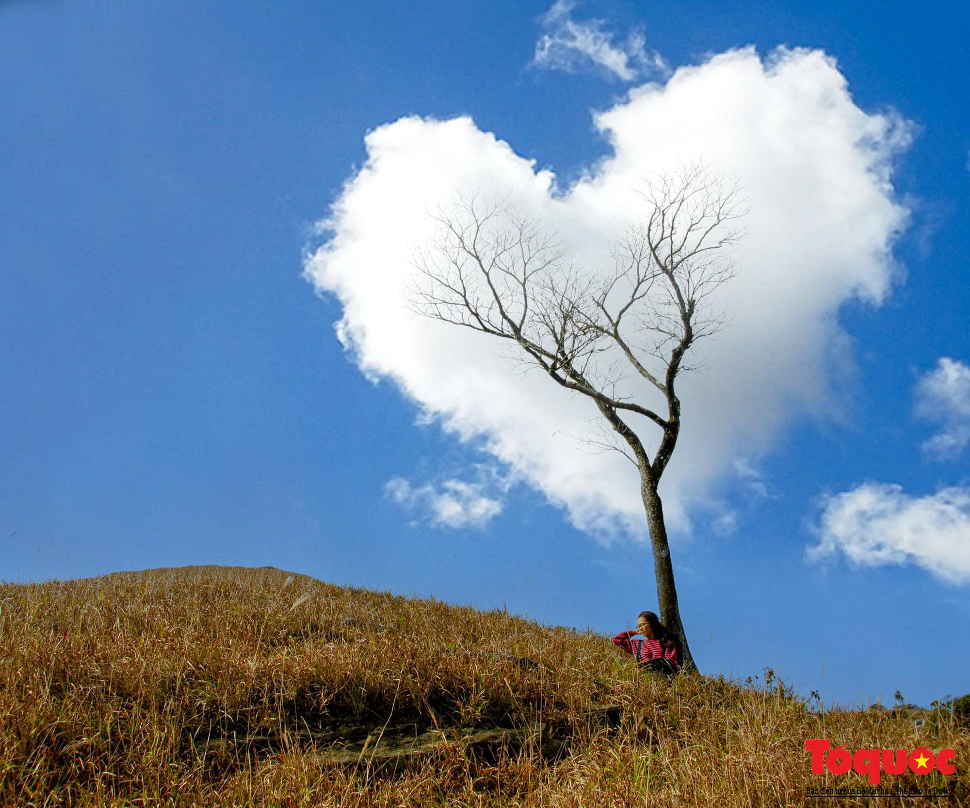 """Ngắm núi Cha Lạng Sơn, đỉnh """" Everest """" của Xứ Lạng - Ảnh 6."""