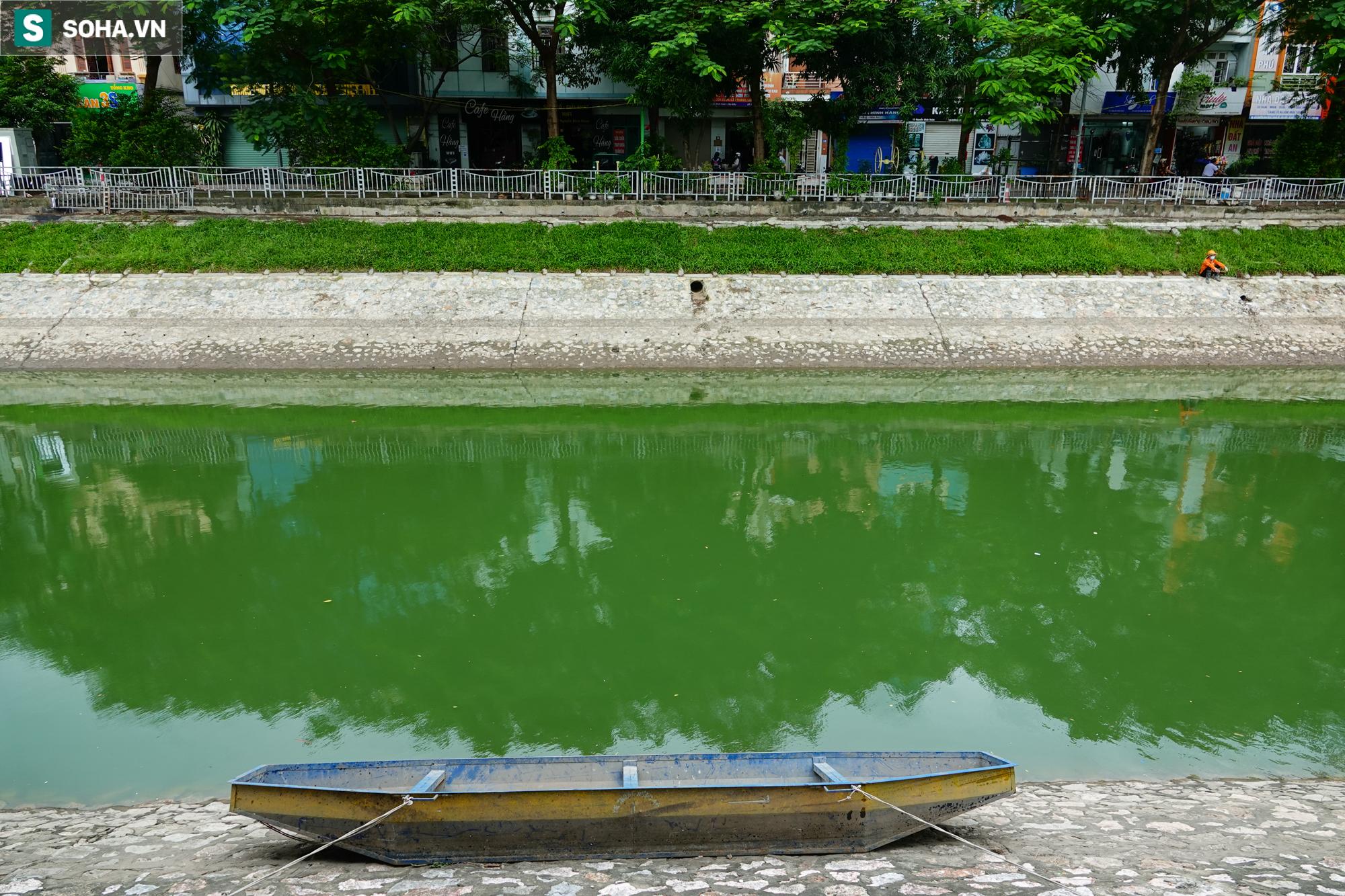 [ẢNH] Cận cảnh dòng nước xanh ngắt hiếm thấy tại sông Tô Lịch, cá bơi nhộn nhịp hàng đàn - Ảnh 6.