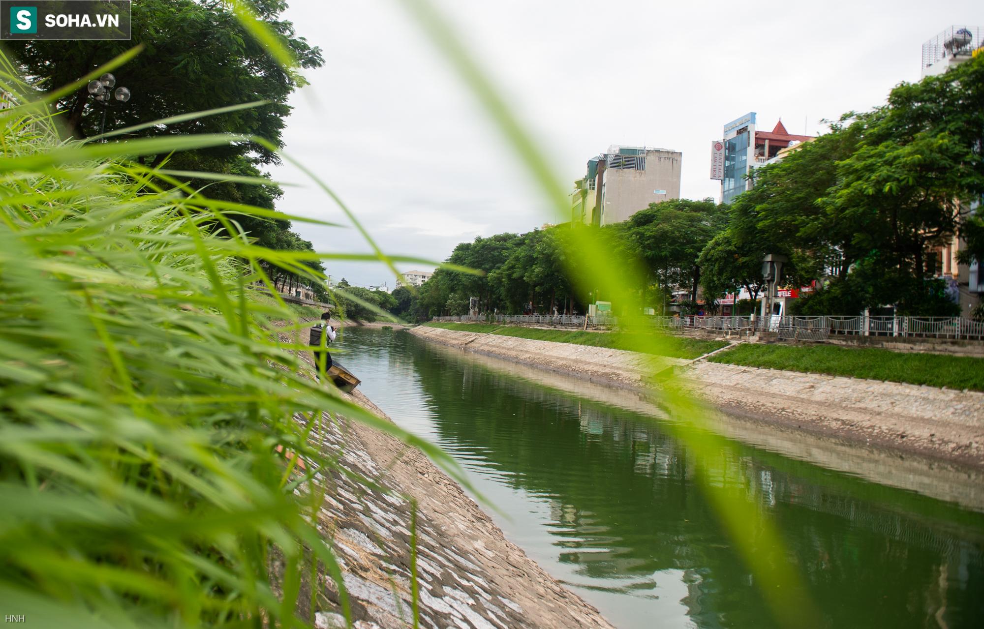 [ẢNH] Cận cảnh dòng nước xanh ngắt hiếm thấy tại sông Tô Lịch, cá bơi nhộn nhịp hàng đàn - Ảnh 2.