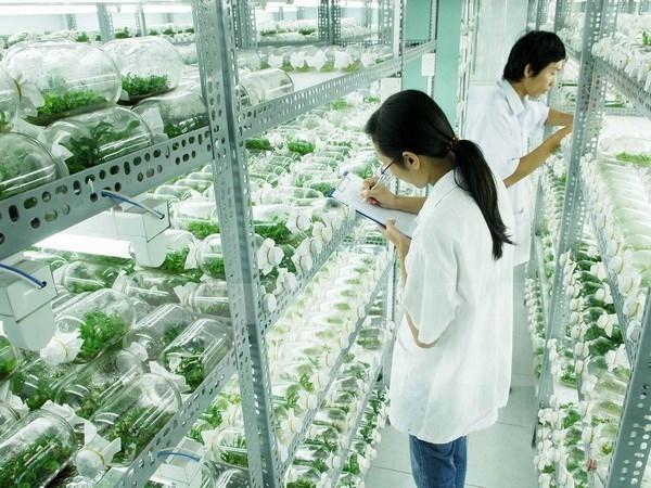 Thủ tướng: Chuyển nông nghiệp sản lượng cao sang nông nghiệp công nghệ cao, sinh thái  - Ảnh 1.