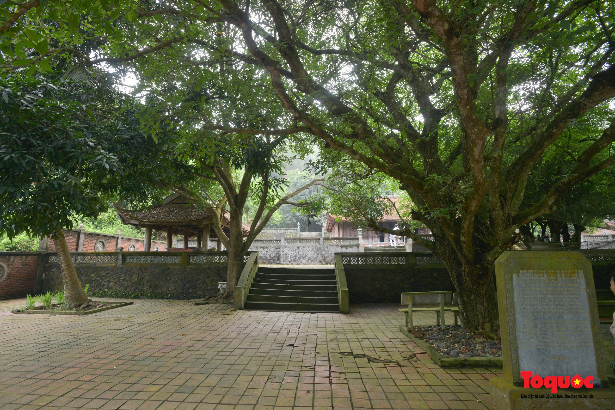 Khám phá ngôi chùa 800 tuổi giữa trùng khơi biển cả - Ảnh 15.