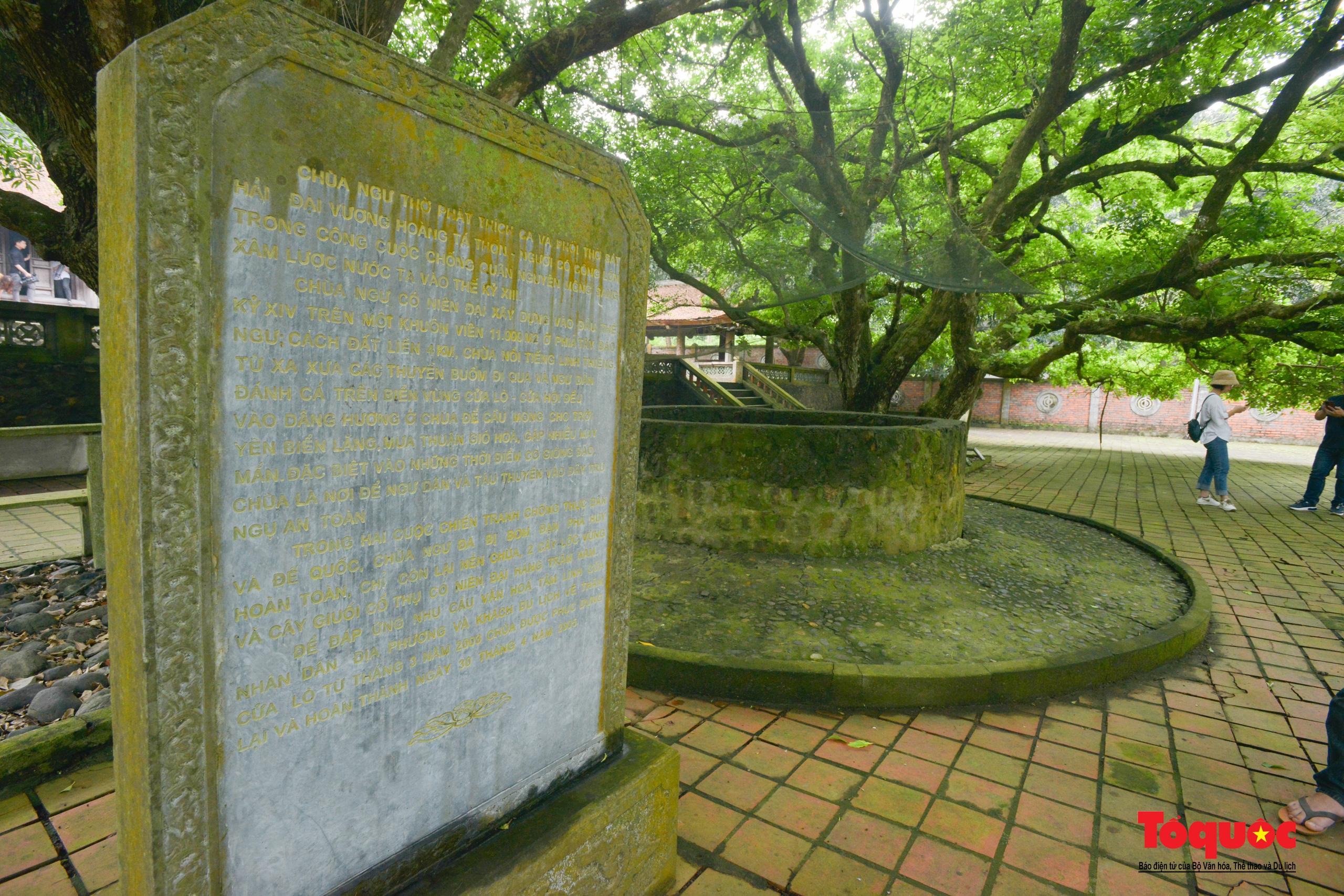 Khám phá ngôi chùa 800 tuổi giữa trùng khơi biển cả - Ảnh 11.