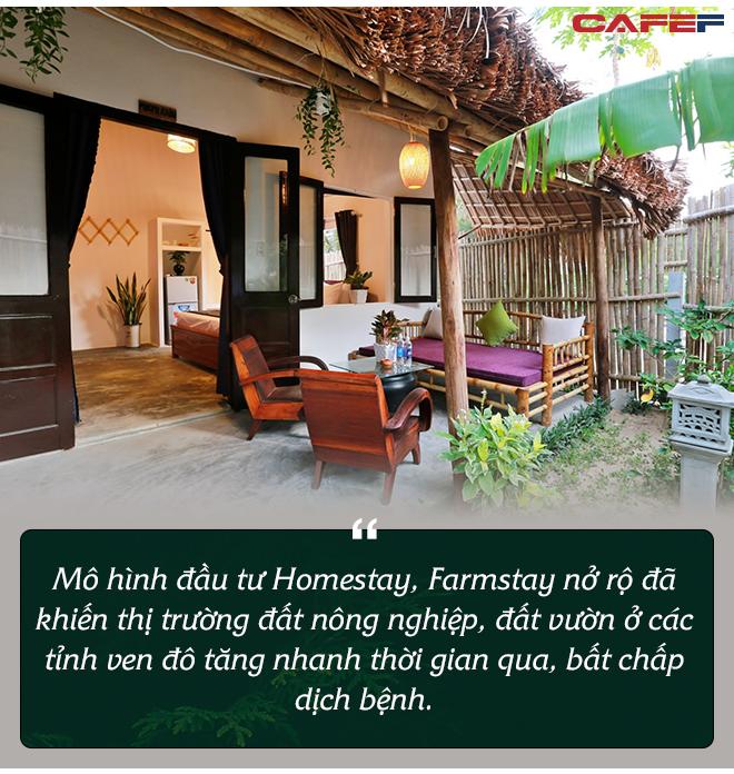 """""""Bỏ phố về quê"""" xây homestay, farmstay - Đầu tư sinh lời hay thú vui của giới nhà giàu - Ảnh 2."""