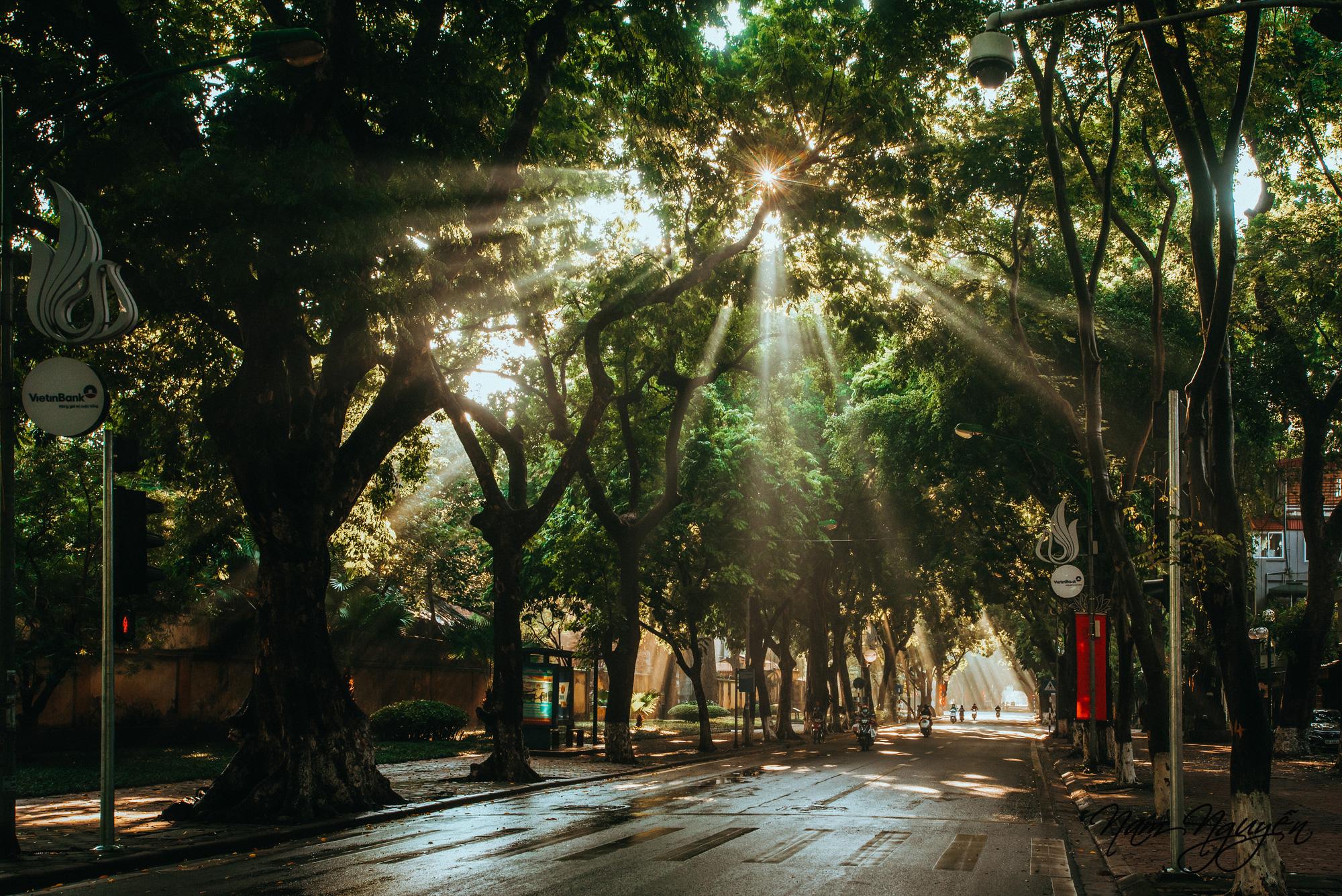 Say đắm trước vẻ đẹp của mùa thu Hà Nội - Ảnh 15.