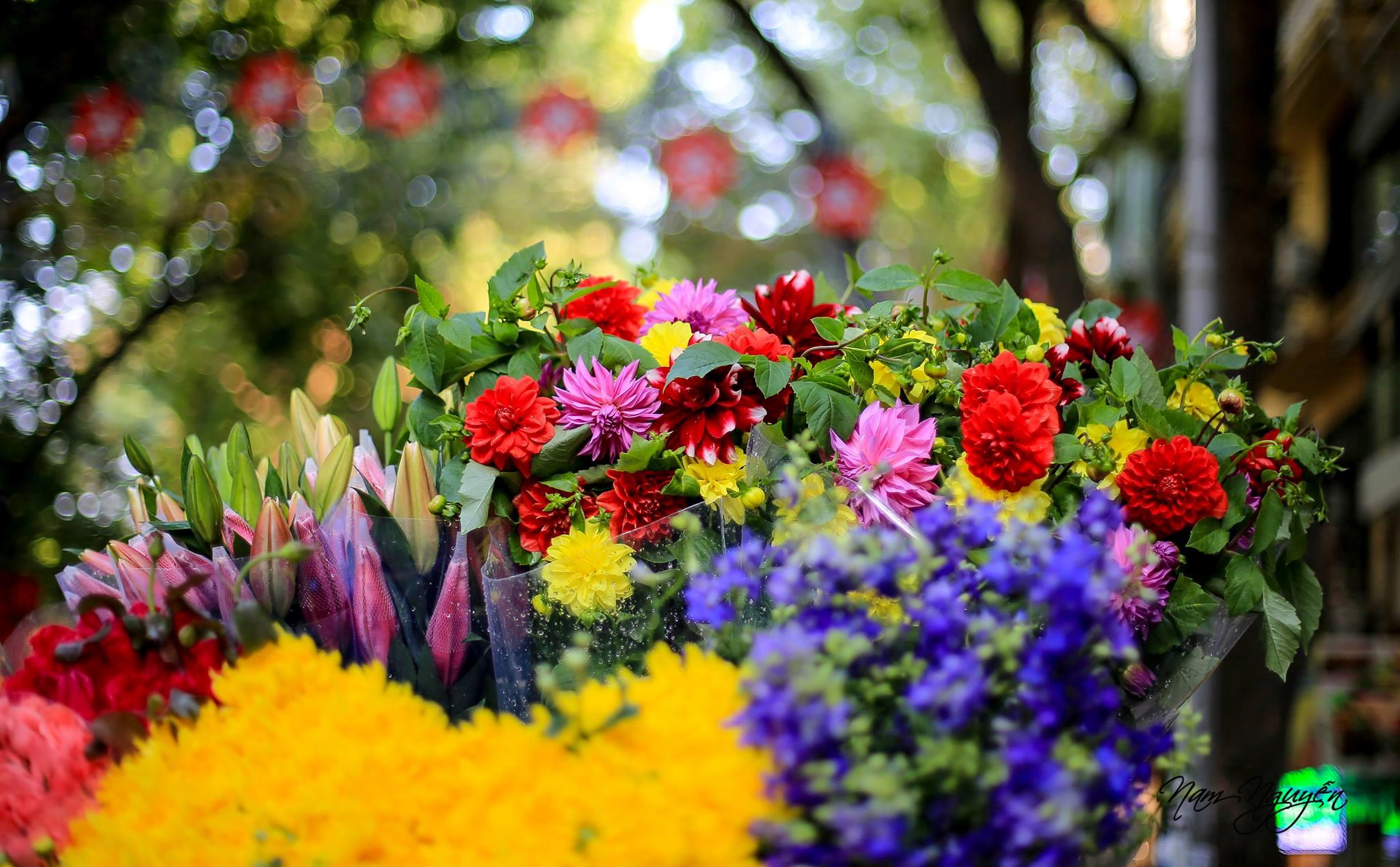 Thời tiết Tết Nguyên đán được đánh giá là đẹp. Ảnh minh họa: Nam Nguyễn. \u201c