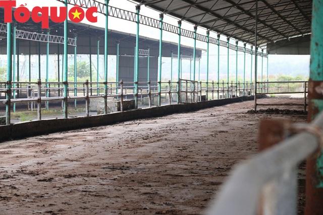 """Tan hoang ở """"siêu dự án"""" 4.500 tỷ đồng khiến ông Trần Bắc Hà vướng vòng lao lý - Ảnh 5."""
