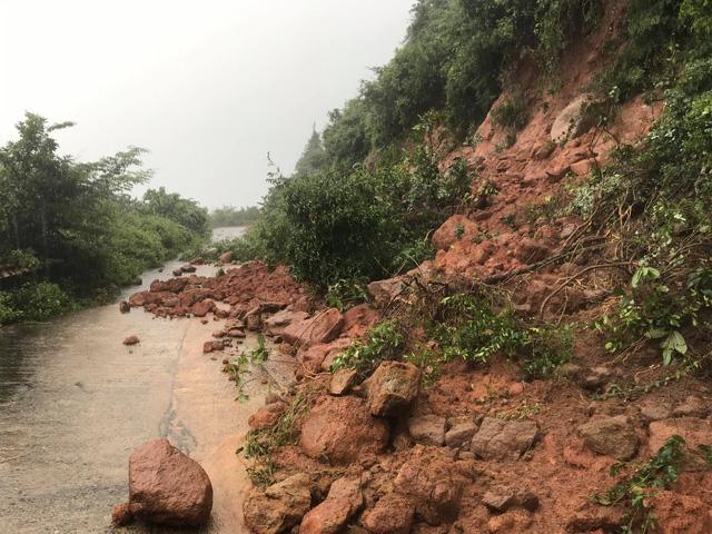 Khuyến cáo du khách hạn chế lên bán đảo Sơn Trà, Đà Nẵng thời điểm này - Ảnh 6.