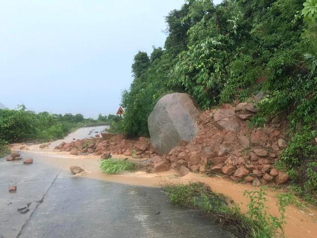 Khuyến cáo du khách hạn chế lên bán đảo Sơn Trà, Đà Nẵng thời điểm này - Ảnh 9.
