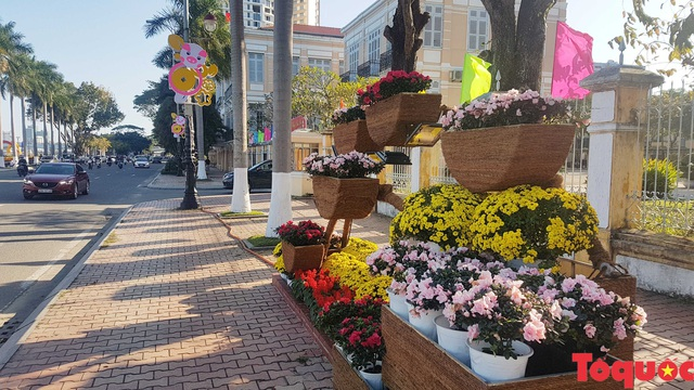 Người dân và du khách mê mẩn đường hoa Đà Nẵng Tết Kỷ Hợi 2019 - Ảnh 19.
