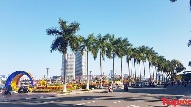 Người dân và du khách mê mẩn đường hoa Đà Nẵng Tết Kỷ Hợi 2019 - Ảnh 18.