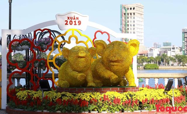 Người dân và du khách mê mẩn đường hoa Đà Nẵng Tết Kỷ Hợi 2019 - Ảnh 20.