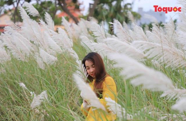 Mê mẩn mùa lau trắng ở Đà Nẵng  - Ảnh 7.