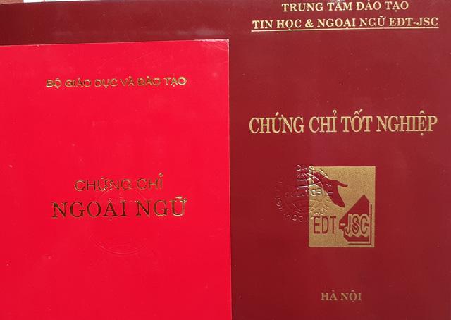 Các Sở GDĐT TP.HCM, Hà Nội, Cần Thơ vào diện thanh tra trong năm 2020 - Ảnh 1.