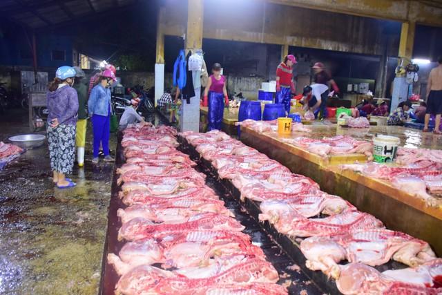 Chủ tịch Thừa Thiên Huế kiểm tra công tác phòng chống dịch tả lợn Châu Phi lúc 3h sáng - Ảnh 2.