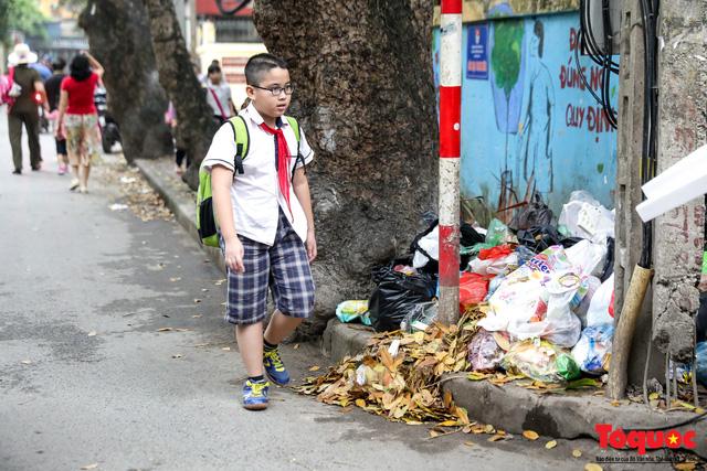 Đống Đa (Hà Nội): Người dân bức xúc vì nạn đổ rác trộm, chất thành đống ngay cạnh biển cấm - Ảnh 10.
