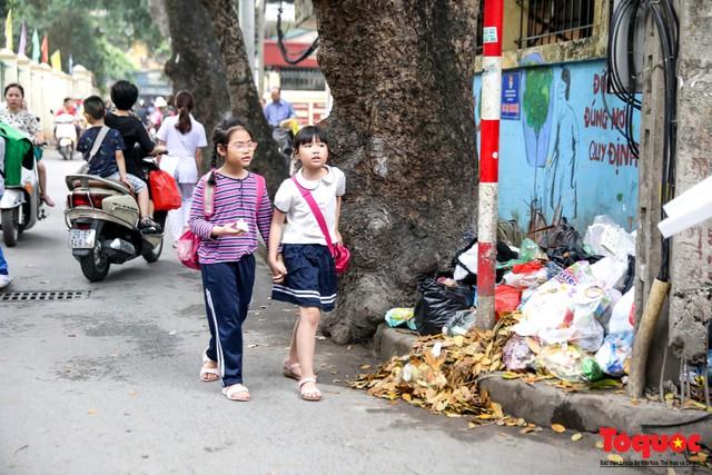 Đống Đa (Hà Nội): Người dân bức xúc vì nạn đổ rác trộm, chất thành đống ngay cạnh biển cấm - Ảnh 11.