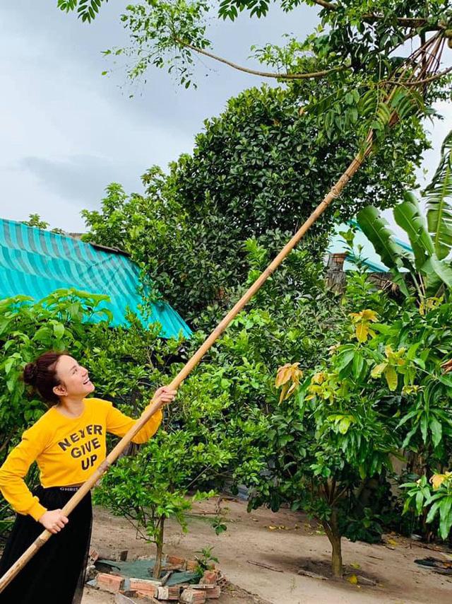 Căn biệt thự ngập tràn hoa và cây ăn quả của nữ ca sĩ Vy Oanh - Ảnh 7.