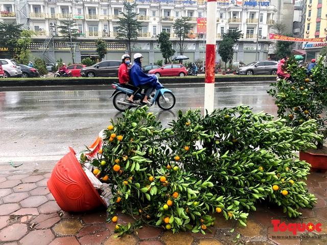 Hà nội đổ mưa lớn: Đào, quất giảm giá mạnh ngày 30 Tết, cây đào giá cả triệu bạc biến thành củi chỉ sau 1 ngày - Ảnh 5.