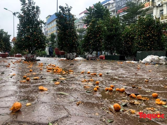 Hà nội đổ mưa lớn: Đào, quất giảm giá mạnh ngày 30 Tết, cây đào giá cả triệu bạc biến thành củi chỉ sau 1 ngày - Ảnh 6.