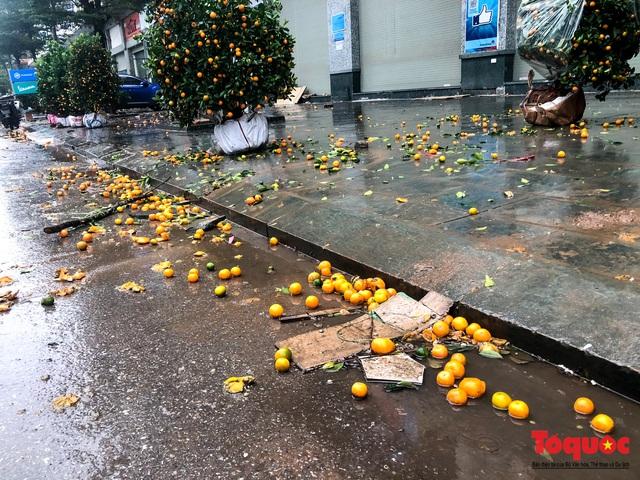 Hà nội đổ mưa lớn: Đào, quất giảm giá mạnh ngày 30 Tết, cây đào giá cả triệu bạc biến thành củi chỉ sau 1 ngày - Ảnh 7.