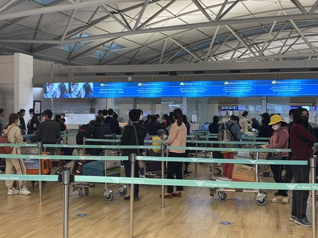 Đưa gần 450 công dân Việt Nam từ Hàn Quốc về nước - Ảnh 1.