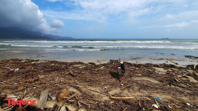 Bờ biển Đà Nẵng rác thải tràn ngập sau bão Molave - Ảnh 2.