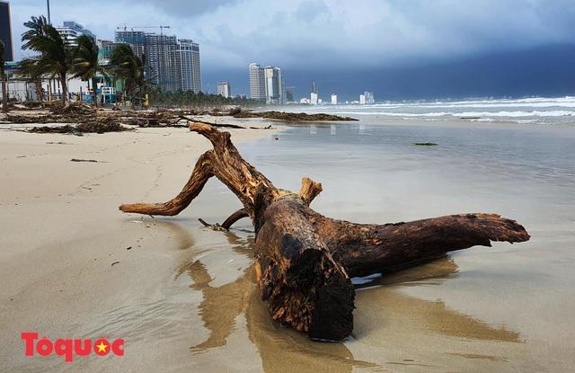 Bờ biển Đà Nẵng rác thải tràn ngập sau bão Molave - Ảnh 4.