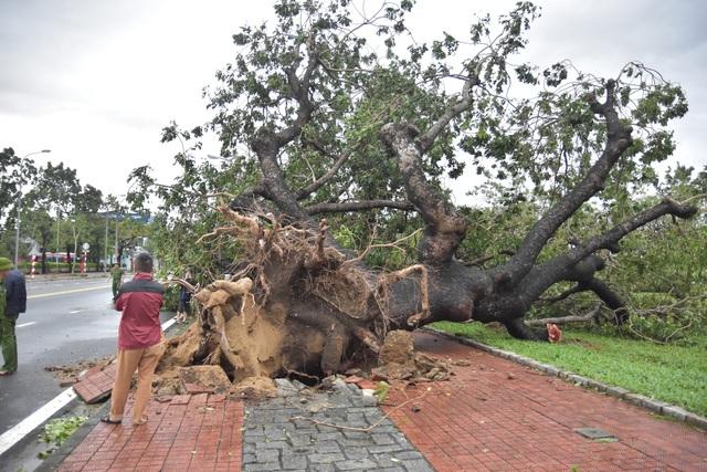 Những hình ảnh thiệt hại ban đầu ở Đà Nẵng và Thừa Thiên Huế do bão Vamco, Quảng Bình di dời hàng trăm hộ dân tránh bão - Ảnh 1.