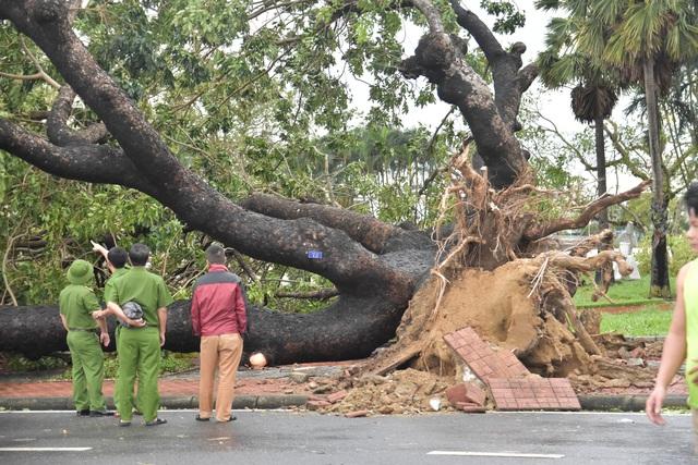Những hình ảnh thiệt hại ban đầu ở Đà Nẵng và Thừa Thiên Huế do bão Vamco, Quảng Bình di dời hàng trăm hộ dân tránh bão - Ảnh 2.
