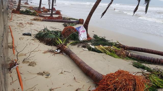 Những hình ảnh thiệt hại ban đầu ở Đà Nẵng và Thừa Thiên Huế do bão Vamco, Quảng Bình di dời hàng trăm hộ dân tránh bão - Ảnh 22.