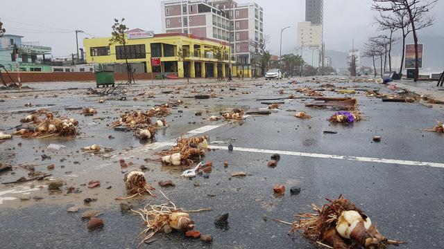 Những hình ảnh thiệt hại ban đầu ở Đà Nẵng và Thừa Thiên Huế do bão Vamco, Quảng Bình di dời hàng trăm hộ dân tránh bão - Ảnh 23.
