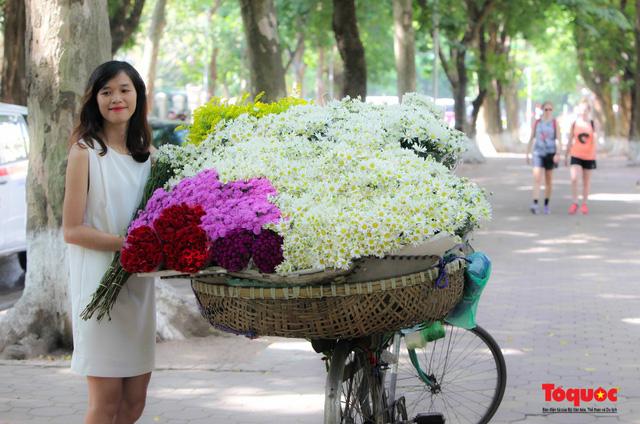 """Cúc Họa mi """"xuống phố"""" mang gió đông về khắp phố phường Hà Nội - Ảnh 16."""