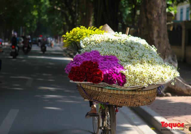 """Cúc Họa mi """"xuống phố"""" mang gió đông về khắp phố phường Hà Nội - Ảnh 14."""