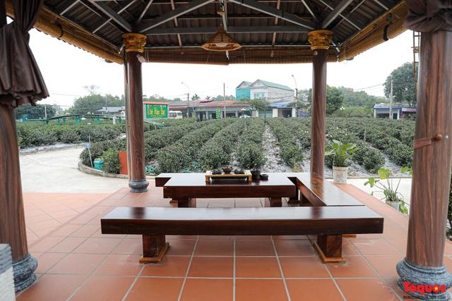 Mô hình kinh doan kết hợp du lịch trải nghiệm góp phần nâng tầm đặc sản chè Thái Nguyên - Ảnh 18.