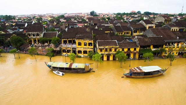 """ĐBQH: """"Sạt lở, ngập lụt... là do mất quá nhiều rừng tự nhiên làm lá chắn""""  - Ảnh 2."""