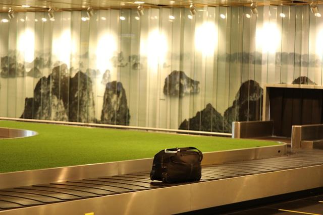Điều ít biết về kiến trúc độc đáo của Sân bay khu vực hàng đầu thế giới 2020 (Kính nhờ chị hỗ trợ cho đăng giúp em vị trí Bài ảnh và Title xuất hiện trang chủ với ạ!) - Ảnh 9.