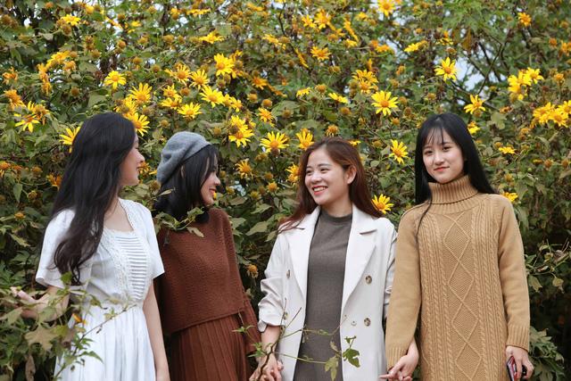 Đường hoa dã quỳ ở Quảng Trị thu hút giới trẻ - Ảnh 1.