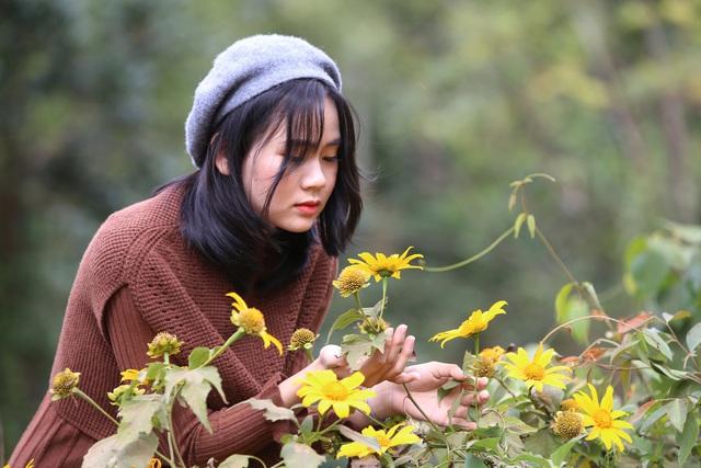 Đường hoa dã quỳ ở Quảng Trị thu hút giới trẻ - Ảnh 2.