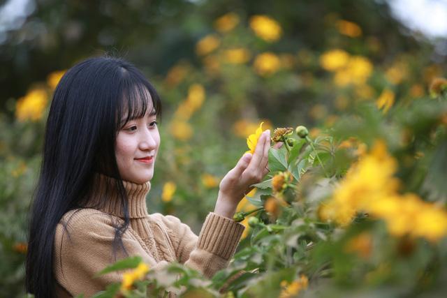 Đường hoa dã quỳ ở Quảng Trị thu hút giới trẻ - Ảnh 4.