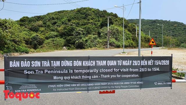 Đà Nẵng lập chốt chặn không cho người dân và du khách lên bán đảo Sơn Trà để phòng chống dịch Covid-19 - Ảnh 1.