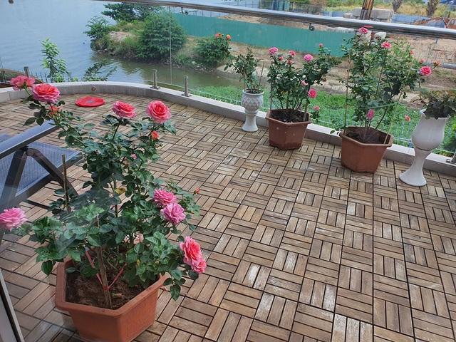Khu vườn ngập sắc hoa trong biệt thự của Vũ Thu Phương - Ảnh 2.