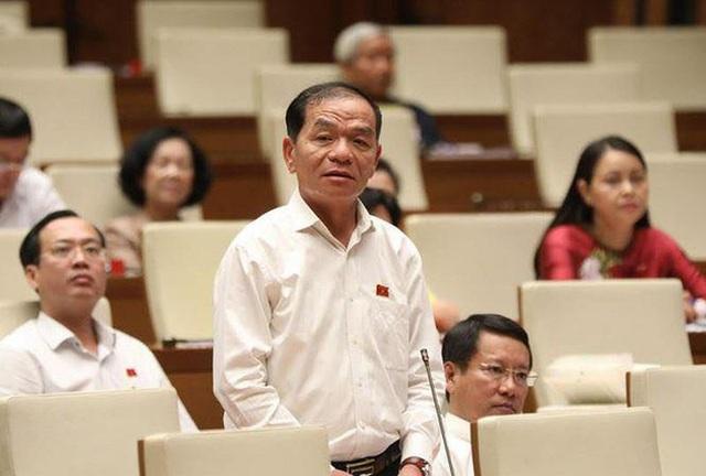 7 nguy cơ khiến đại biểu Lê Thanh Vân phải đề nghị Quốc hội ban hành Luật An ninh về kinh tế - Ảnh 1.