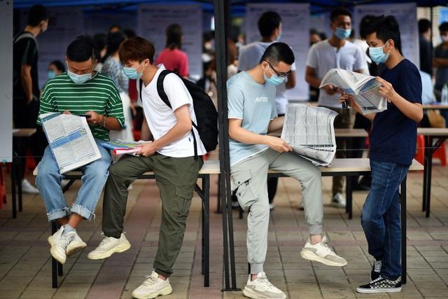 Trung Quốc bắt đầu chiến lược giúp sinh viên tốt nghiệp tìm việc làm - Ảnh 1.