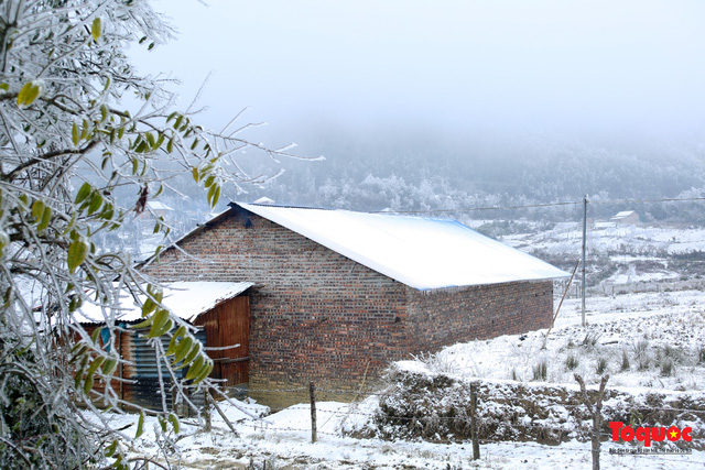 Cận cảnh băng tuyết phủ trắng các triền nùi ở Y Tý - Ảnh 11.