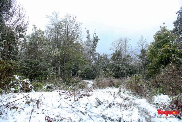 Cận cảnh băng tuyết phủ trắng các triền nùi ở Y Tý - Ảnh 8.