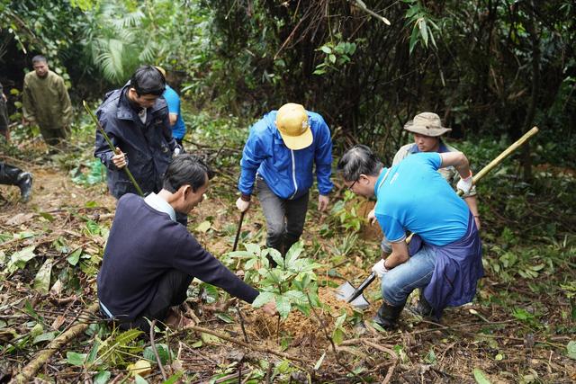 Trồng 2.500 cây gỗ bản địa tại Khu bảo tồn thiên nhiên Phong Điền - Ảnh 7.