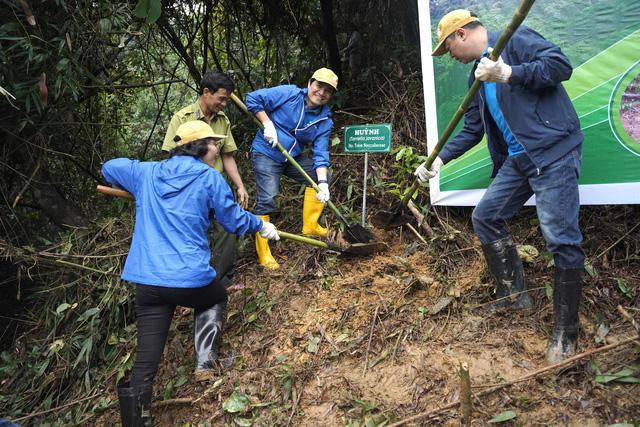 Trồng 2.500 cây gỗ bản địa tại Khu bảo tồn thiên nhiên Phong Điền - Ảnh 4.