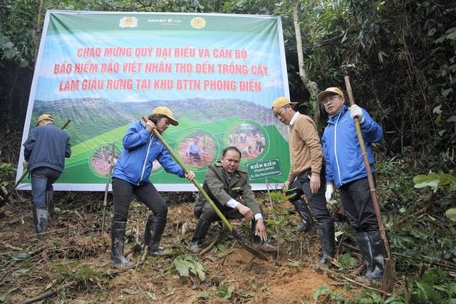 Trồng 2.500 cây gỗ bản địa tại Khu bảo tồn thiên nhiên Phong Điền - Ảnh 3.