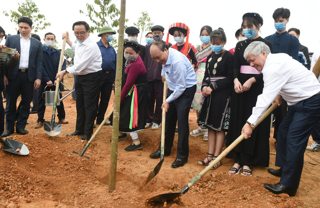 Thủ tướng: Trồng cây xanh để thúc đẩy quốc kế dân sinh - Ảnh 1.